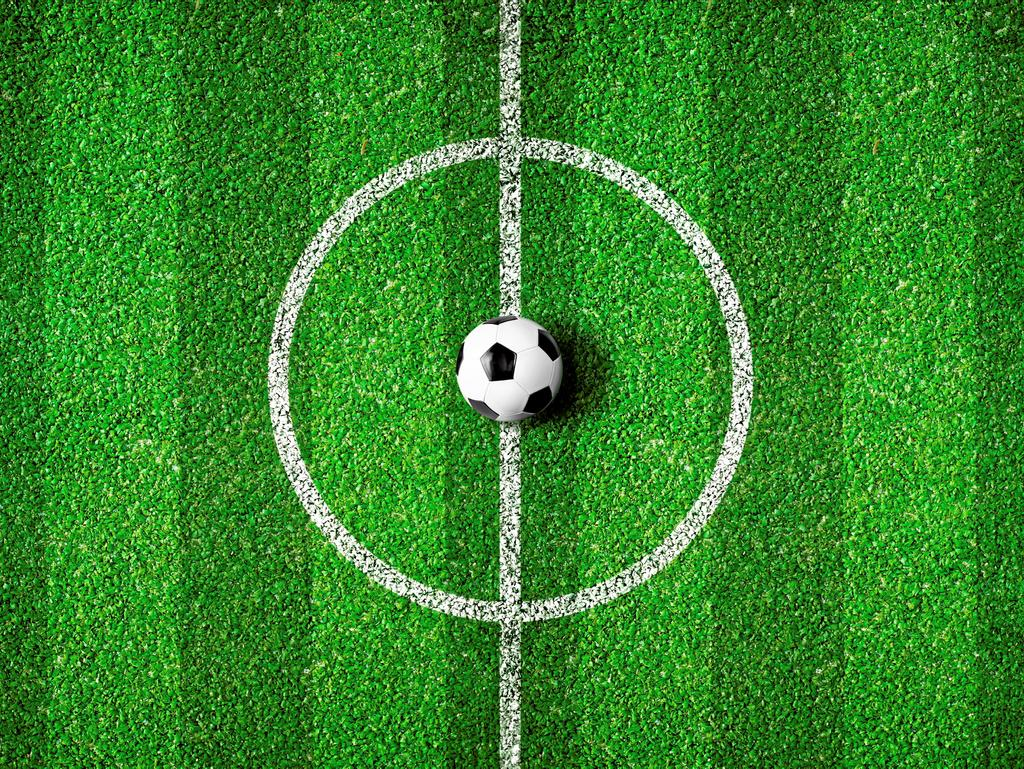 19552102 - soccer field center and ball top view background
